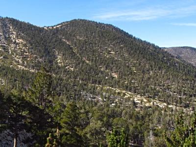Image result for charlton Peak