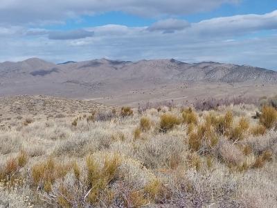 Warm Springs Mountain - 6,020' Nevada