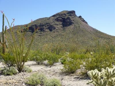 Scarface Mountain - 2,546' Arizona