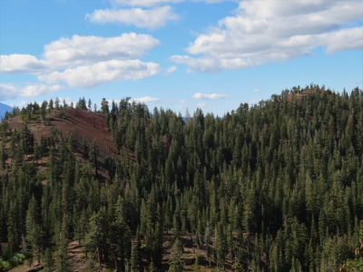 Red Cinder Cone